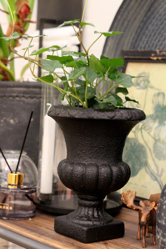 Potteplante i vase