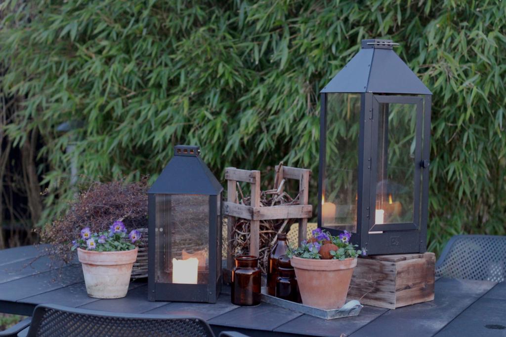 Vårkvelder i hagestuen